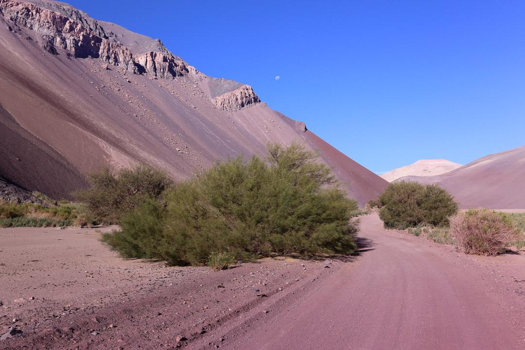Desert 2-1