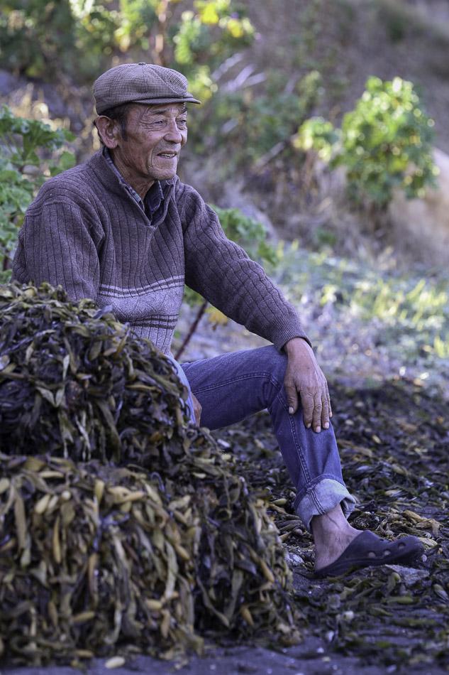 Seaweed gatherer, Boyeruca, Chile.