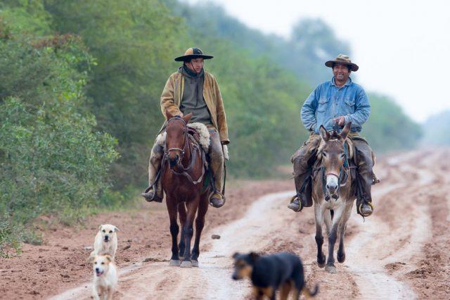 gauchos on horse