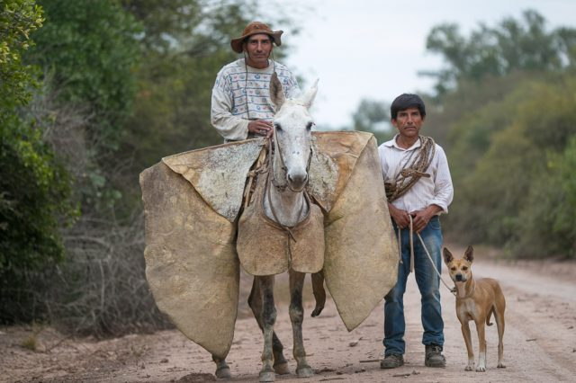 Chaco Gaucho