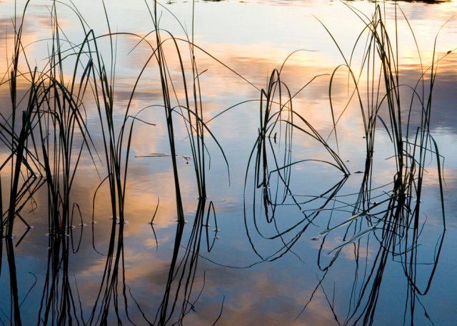 waterside textures