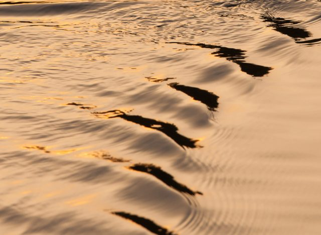 Textures of golden water