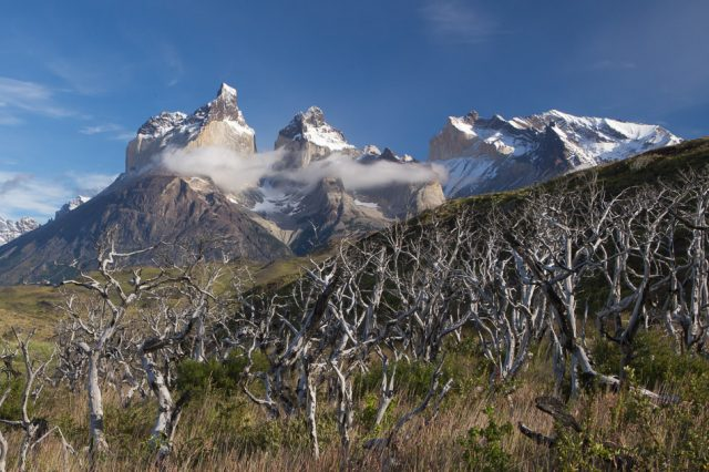 Toress del paine